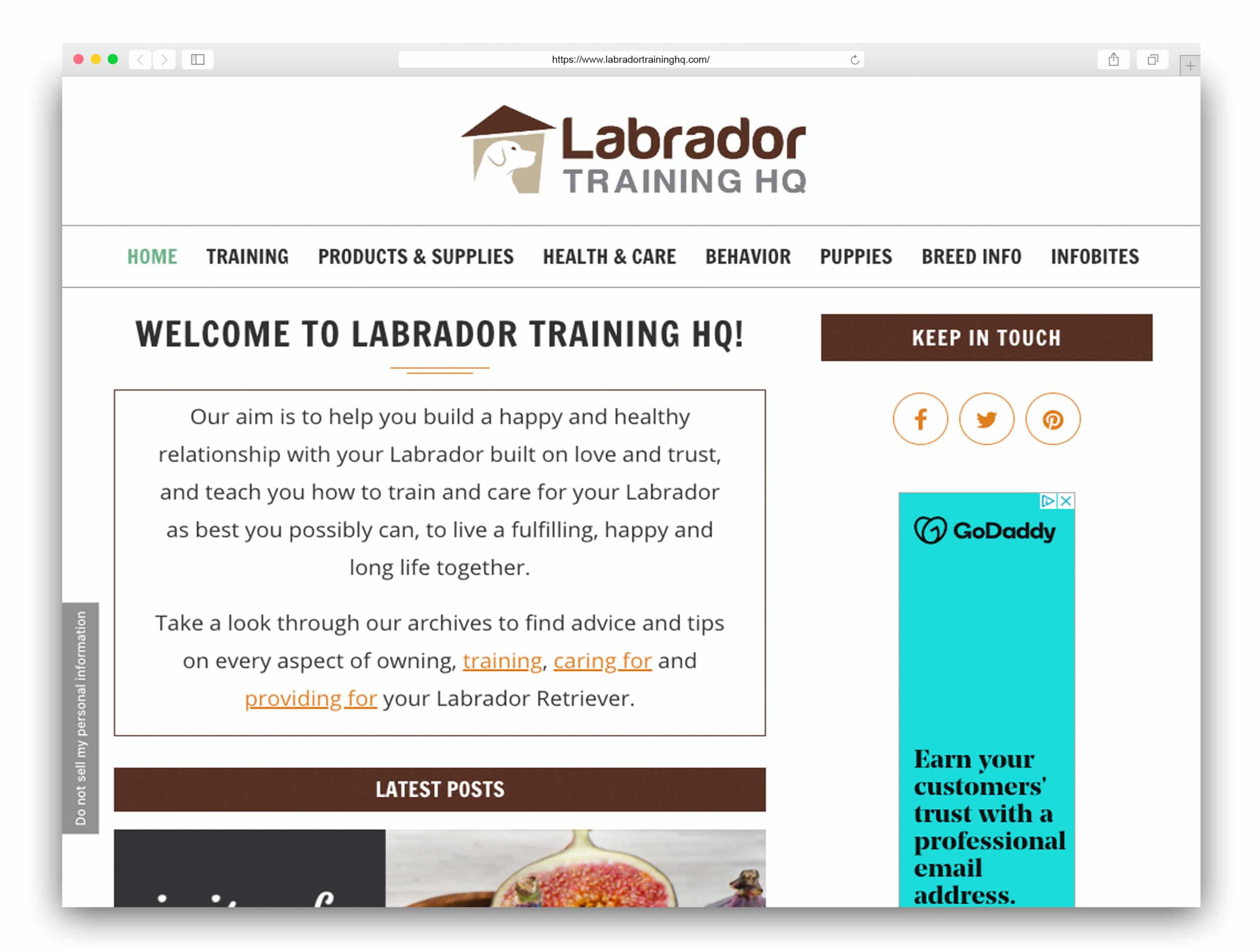 Labrador Training HQ