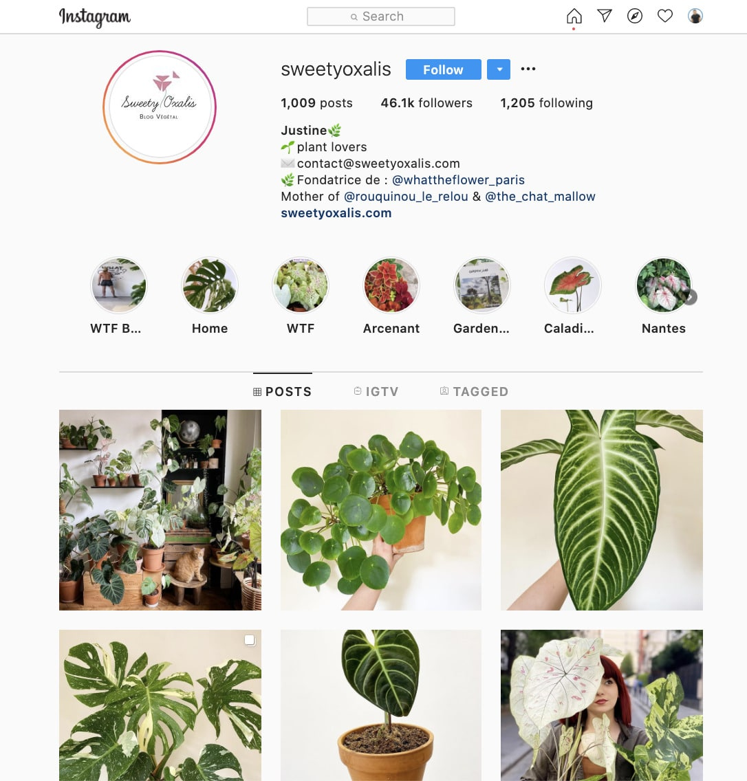 Take Care of Plants instagram