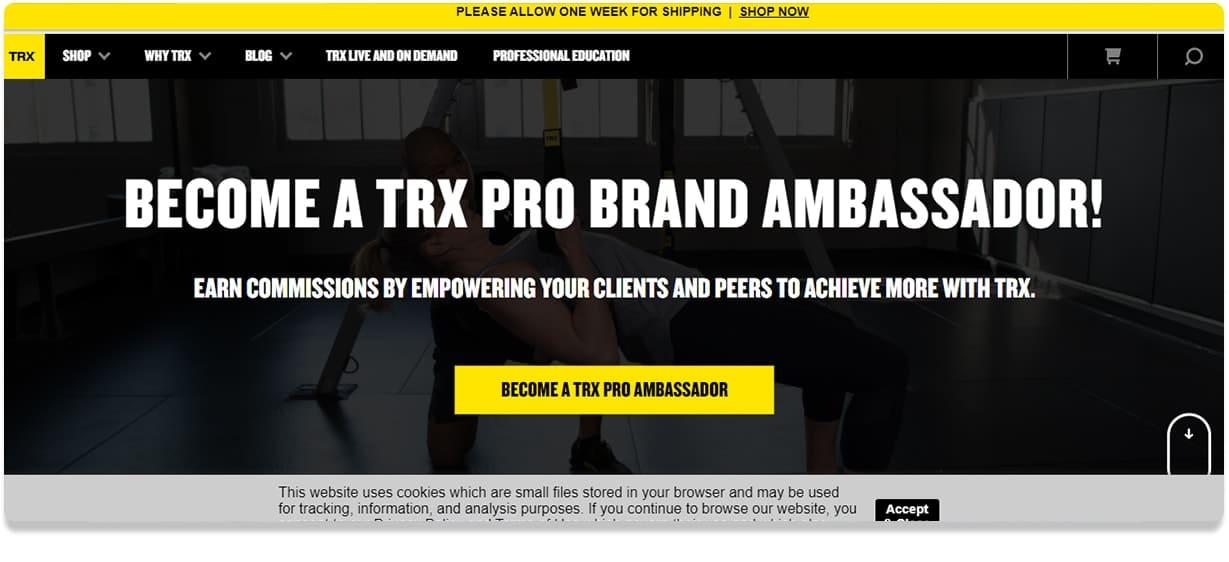 TRX Pro band
