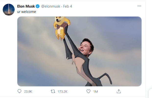Elon Musk Examples Social